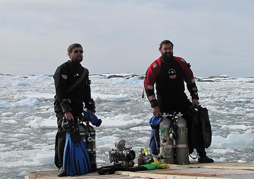 У Києві вперше пройде фотовиставка підводного фотографа, полярника Андрія Утєвського «Антарктида: життя льодового континенту»