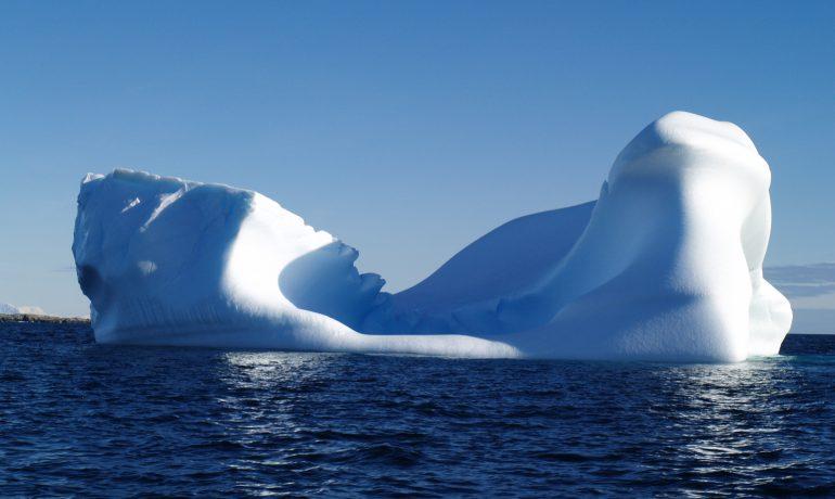 У Києві відбудеться семінар Комісії зі збереження морських живих ресурсів Антарктики
