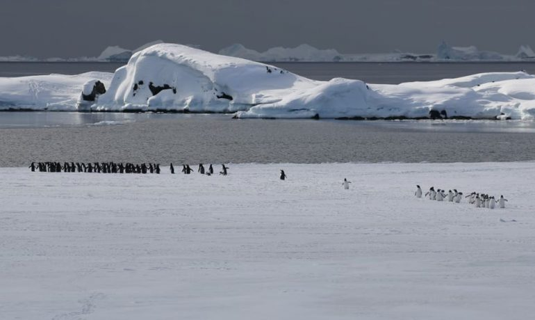 """""""Літо в Антарктиді"""". Третя серія сюжетів у """"Сніданку з 1+1"""". Гідрометеоролог Олександр Зулас про вивчення змін клімату"""