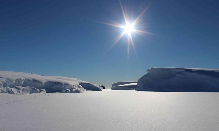 Керівництво SCAR затвердило три нові програми досліджень Антарктики