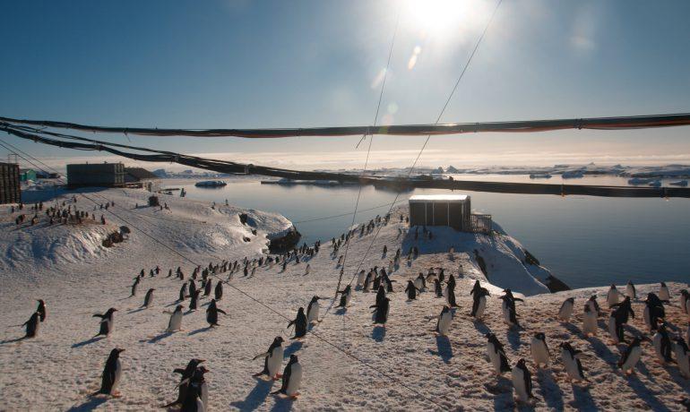 Новий рік у розпал літа. Як святкуватимуть українці в Антарктиді